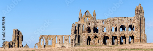 Whitby Abbey panorama Wallpaper Mural