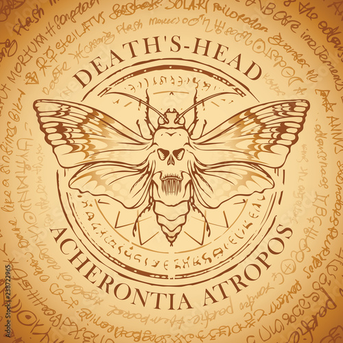Photo Illustration of a butterfly Dead head with skull-shaped pattern on the thorax on an old abstract background with inscriptions written in a circle