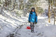 Boy Sledding In The Winter Snow