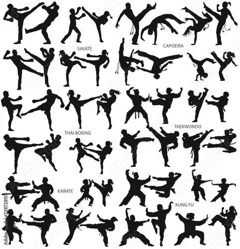 Carta da parati Martial art man woman children karate savate capoeira thai boxing taekwondo kung
