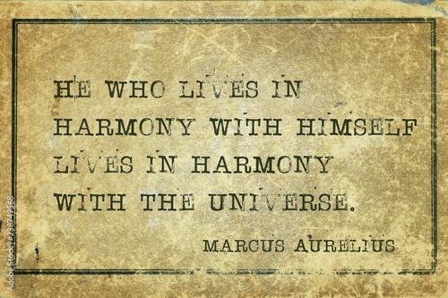 Fotografie, Obraz lives in harmony MAurelius