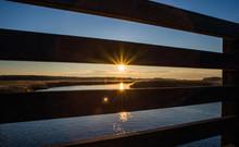 River Bank Reed At Sunset