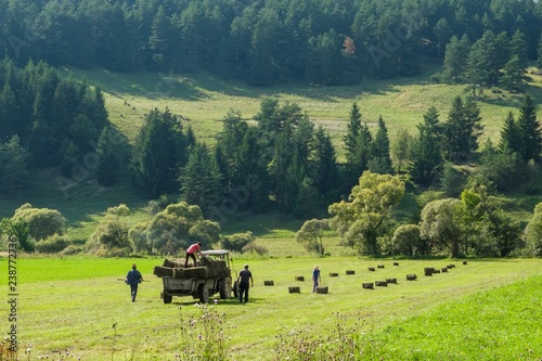 In de dag Lime groen rural landscape with hay and tractor
