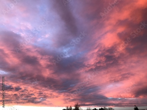 Papiers peints Lilas Nuage et coucher de soleil