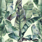 Seamless pattern with banana leaves and exotic birds on a gentle beige background. Tropical background in tinted green colors for fabrics, wallpapers, textiles. Illustration with colored pencils. - 238782512