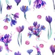 Watercolor hand painted seamless pattern with purple crocuses