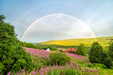 Fototapeta Tęcza - Beautiful summer rainbow in Swedish mountains
