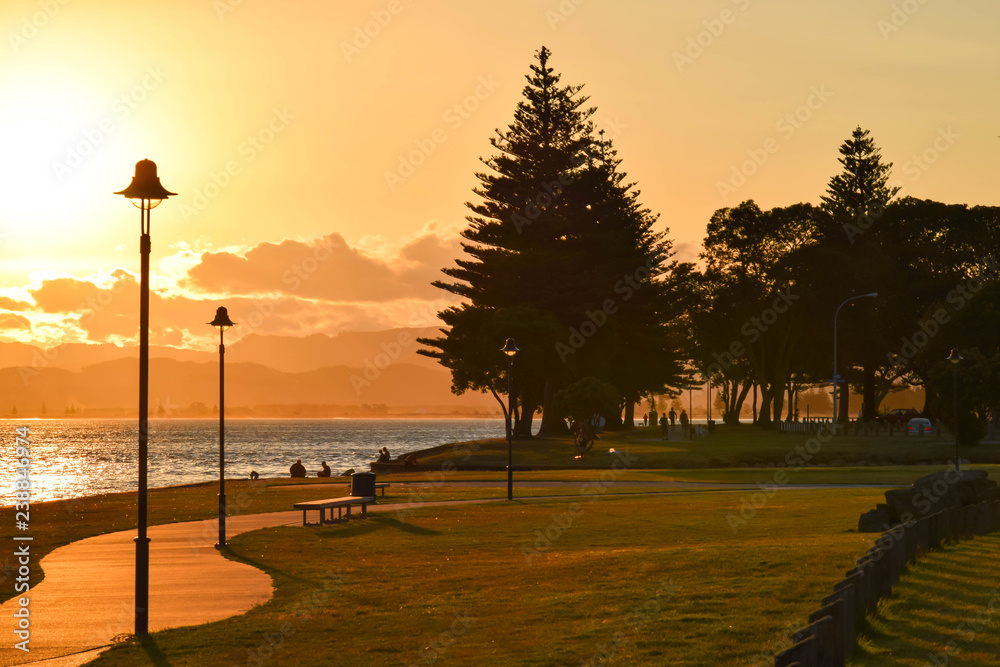 Fototapety, obrazy: A quiet sunset along the beach path in Gisborne, New Zealand.