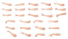 Multiple Female Caucasian Hand...