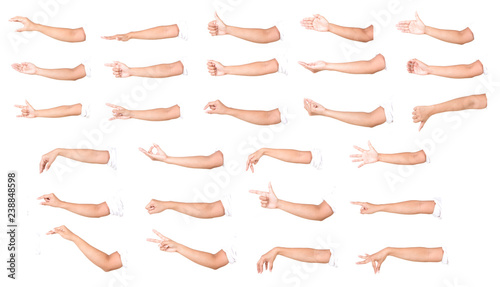 Fotografía  Multiple female caucasian hand gestures isolated over the white background, set