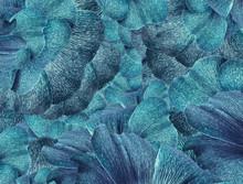 Floral Light Blue  Background. A Bouquet Of  Blue  Petals  Flowers.  Close-up.   Floral Collage.  Flower Composition. Nature.