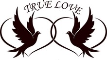 Doves With Hearts And The Text True Love. Illustration On The Theme Of Love