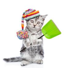 Funny Kitten Wearing A Warm Ha...