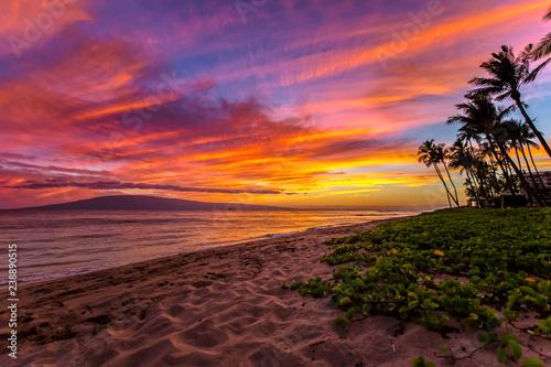 Fototapeta Kaanapali Beach on Maui, Hawaii at Sunset