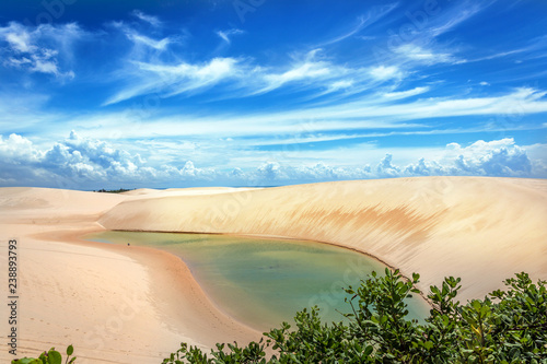 Fotografia  A fresh water lagoon with green vegetation in the foreground in Lencois Maranhen
