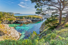 Point Lobos State Reserve At H...