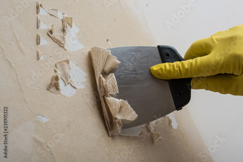 Cleaning the wall from old wallpaper Canvas Print