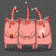 Trio Of Pigs Are Singing A Christmas Song
