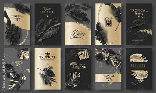 Fototapeta Tropic leaf black and gold big banner set obraz