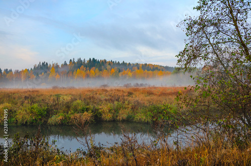 Foto op Aluminium Oranje Foggy autumn landscape with small forest river.Autumnal hazy early morning.Twilight.Calm stream of river flowing between the woods and meadows covered by fog.Windless weather at sunrise.