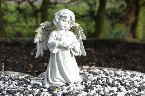Fotografie, Obraz  Betender Engel mit Flügel