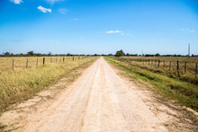 Country Dirt Road Runs Between Farmlands Under Sunny Deep Blue Sky On A Winter Day, Near Filadelfia, In Deutsch Mennonite Colony Fernheim, Gran Chaco, Paraguay