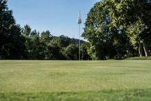 Empty Golf Field Meadow