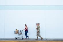 Woman Pushes Shopping Cart Whi...