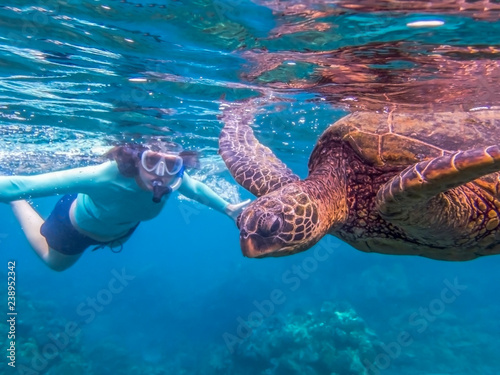Foto op Canvas Schildpad Green Sea Turtle Close Up Profile in Blue Sea with Snorkeler in Background