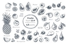 Fruits Hand Drawn Sketch Icons Set. Organic Food