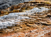 The Travertines Of Mammoth Hot Springs In Yellowstone National Park, Wyoming