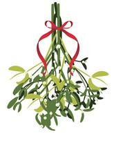 Branch Of Mistletoe