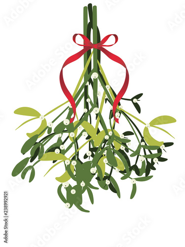 Obraz na plátně Branch of mistletoe