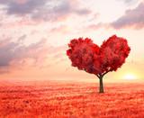 Fototapeta Natura - fantasy landscape with red tree in shape of heart