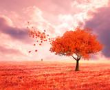 Fototapeta Natura - fantasy landscape with red autumn tree