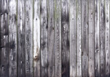 Fototapeta Do przedpokoju - Classic Nature Wood texture wallpaper for background old wood with line