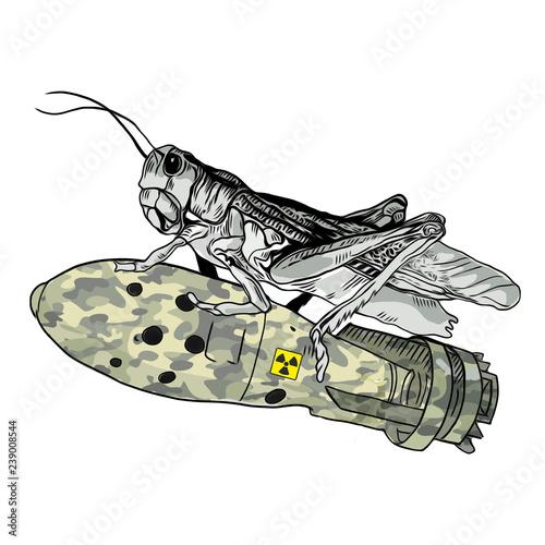 Кузнечик с бомбой на белом фоне