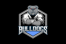 Angry Bulldog Cartoon Character Fighter Athlete Matrialarts Vector. Combat Sport Theme Logo Template