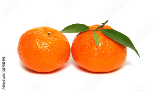 Tangerine or clementine