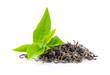 Leinwanddruck Bild - fresh green tea leaf and dry  isolated on white background