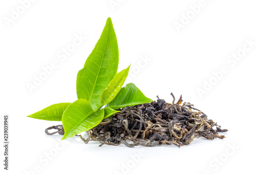 Fototapeta  fresh green tea leaf and dry  isolated on white background