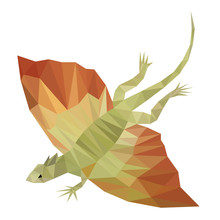 Colorful Polygonal Style Design Of Flying Dragon Lizard