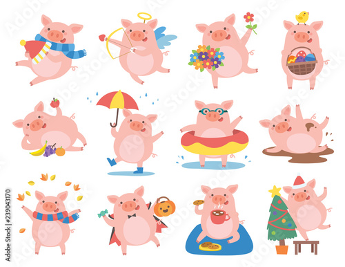 Photo Stands Owls cartoon Cute pig in different situations. Symbol of the year in the Chinese 2019.
