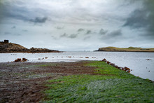 The Jetty At Camus Mor At The Coastline Of North West Skye By Kilmuir - Scotland, United Kingdom