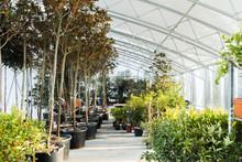 Photo Of Beautiful Greenhouse In Botanical Garden