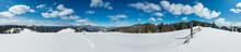 Winter Snowy Carpathian Mounta...