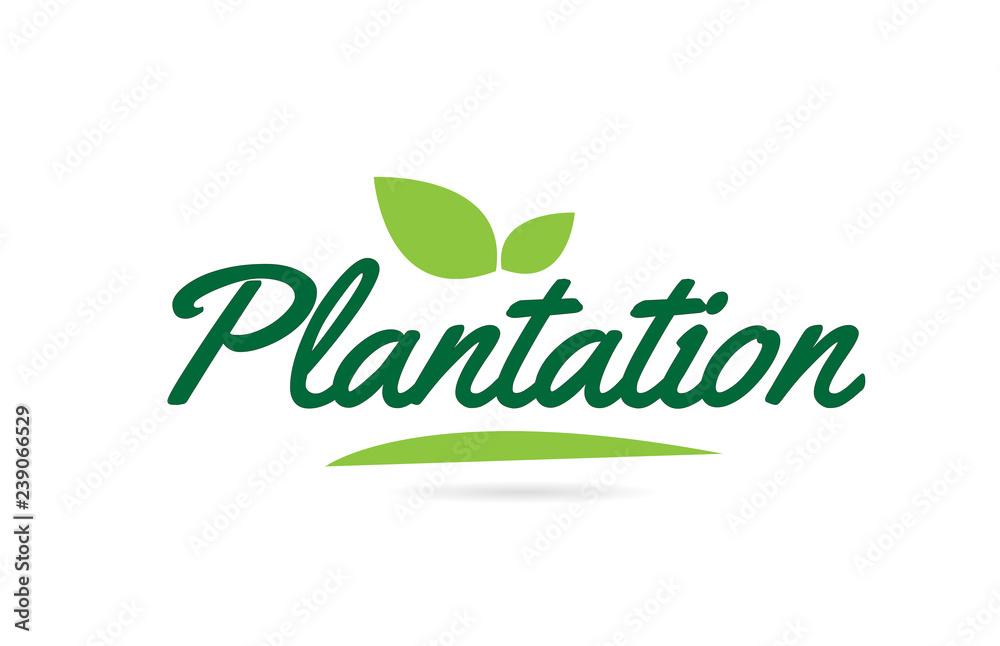 Fototapety, obrazy: green leaf Plantation hand written word text for typography logo design