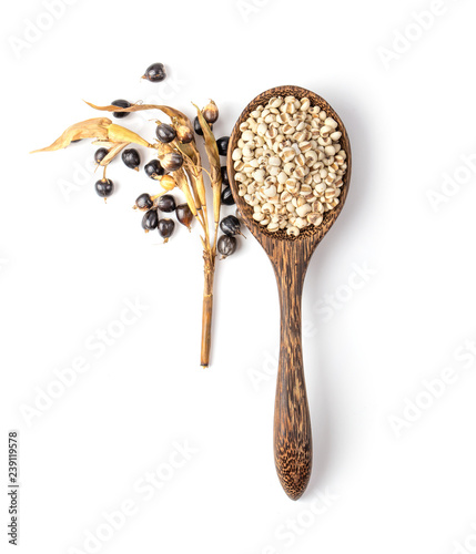 Photographie  jobs tears in wood spoon isolated on white background. top view