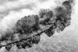 Czarny i biały krajobraz na lesie z mgłą, Włochy - 239129727