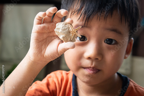 A young boy digging educational fossil in the garden Canvas Print